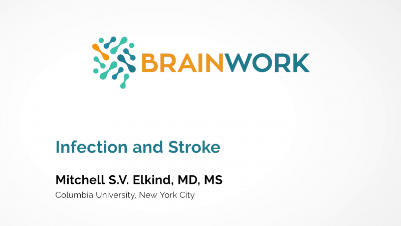 Brainwork-Webinar-Video-03-Mitchell-S-V-Elkind
